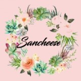 sancheese-broadc